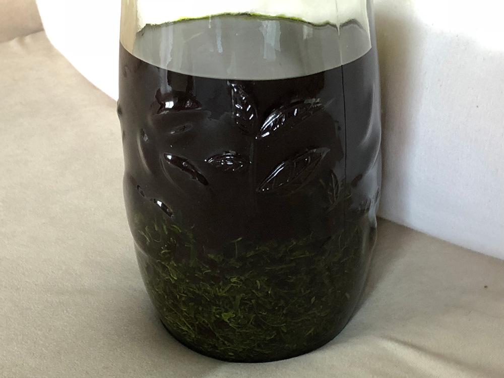 日本茶染め:アルコールで色素抽出、2回目
